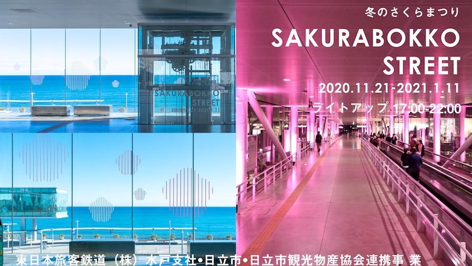 JR日立駅「冬のさくらまつり~SAKURABOKKO STREET~(さくらぼっこ すとりーと)」2020-2021