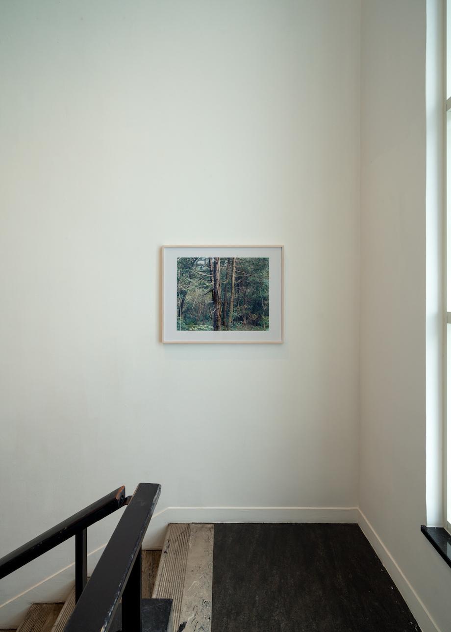 原美術館「光―呼吸 時をすくう5人」会場写真(撮影:今井智己)