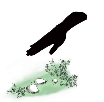 サウンドアート「Ruhe(ルーエ):夢見る貝」(企画・監修:及川潤耶 / ソニフィデア)