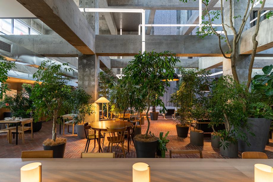 白井屋ホテル 1F カフェ