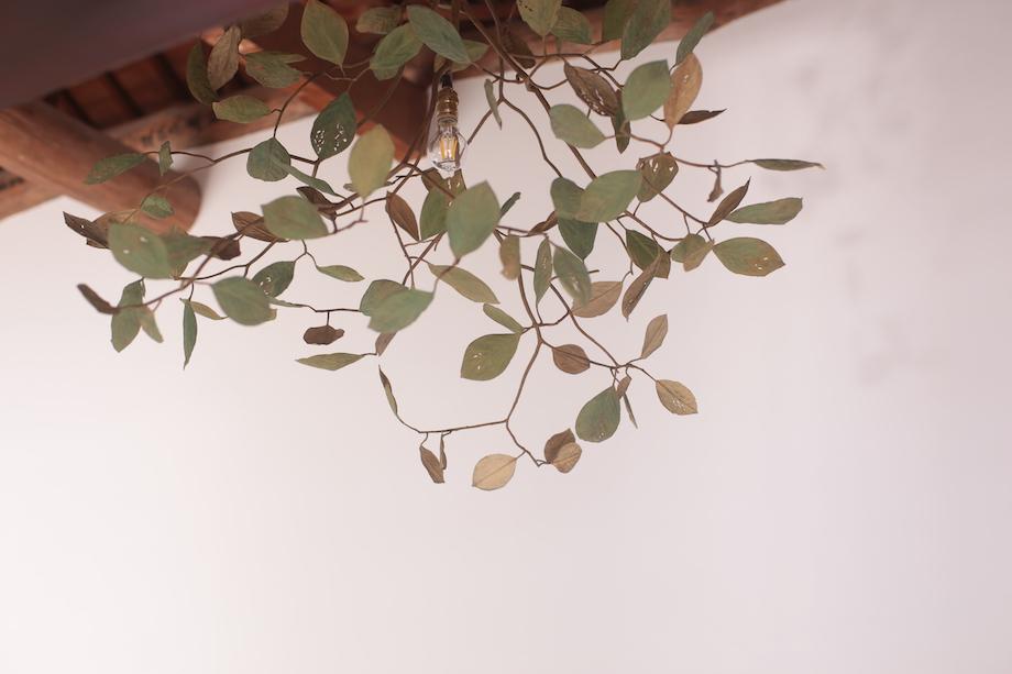 """モリソン小林 作品展""""small plants"""" / UMITOTA シャンデリア"""
