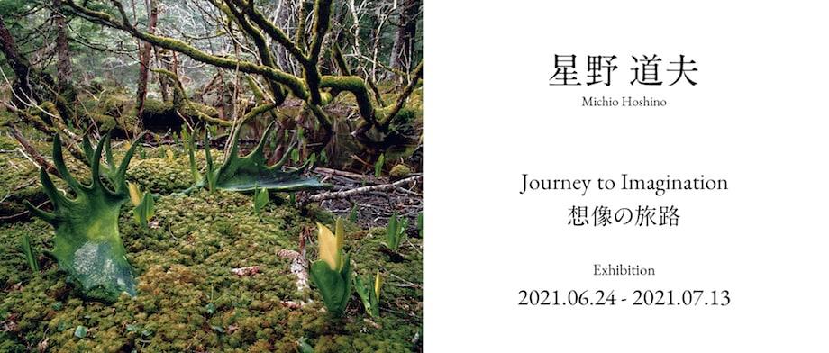 星野道夫「想像の旅路」