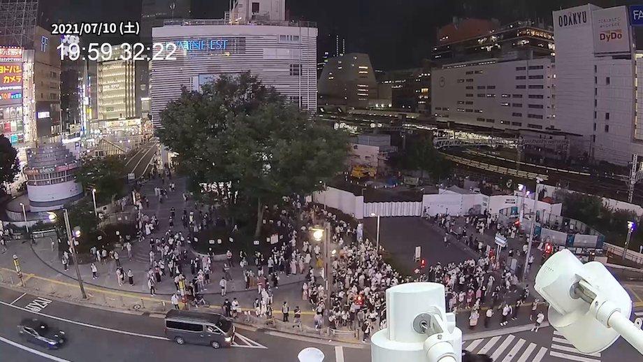 巨大3Dビジョン「新宿東口の猫」