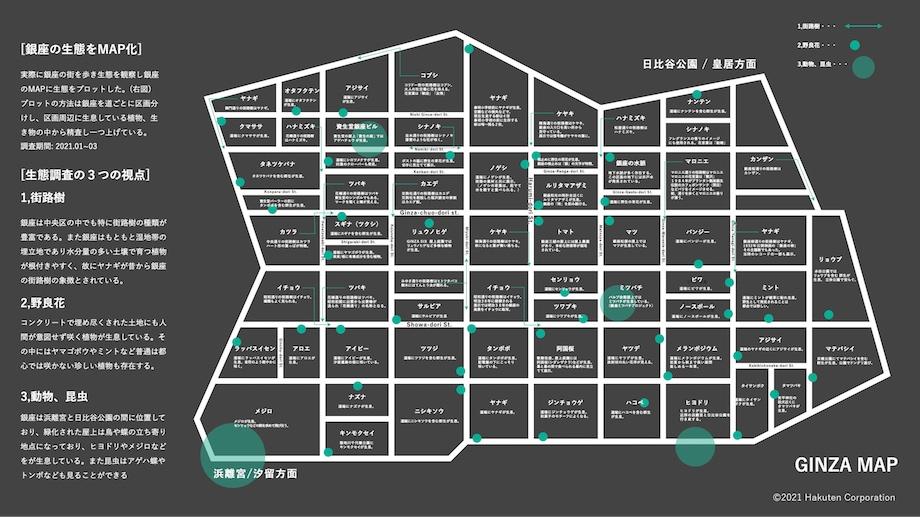 資生堂本社ウィンドウ展示「銀座生態図 GINZA ASSEMBLAGE MAP」